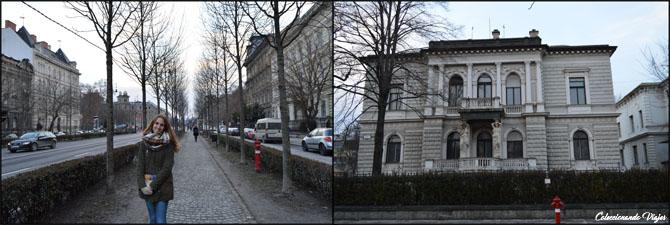 collage avenida