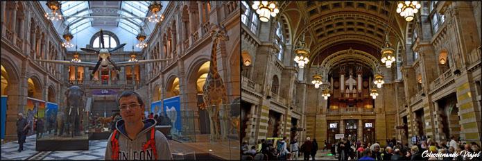 interior-museo